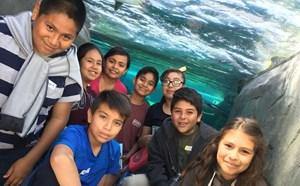 Eisenhower Aquarium Trip - article thumnail image